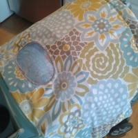 Fantastico New Cover & Canopy For An Old Stroller {tutorial}