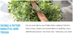 LINK {diying} a pottery barn style herb trough