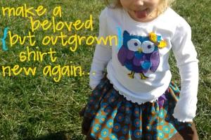 make owl shirt new again