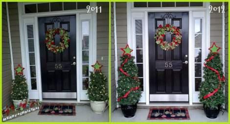 09 tomato cage tree porch 2011-2012