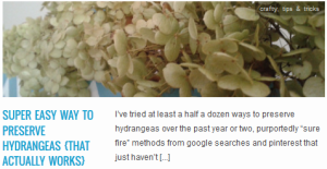 LINK super easy way to preserve hydrangeas {that actually works}