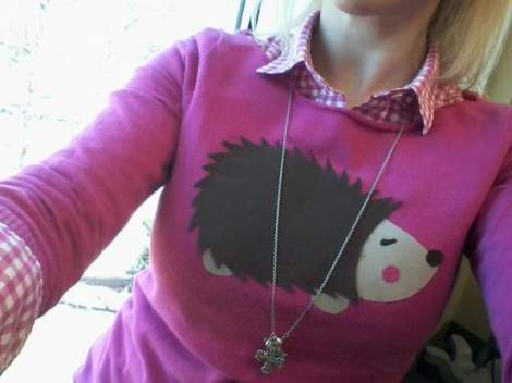 001 hedgehog sweater
