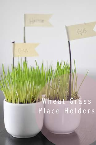 wheat grass decor 02