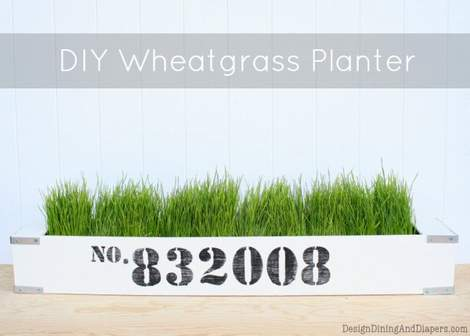 wheat grass decor 08