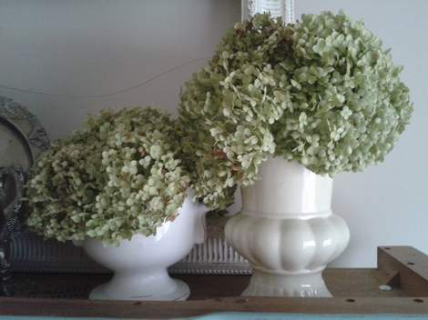 04b top of china cabinet frames hydrangea afros