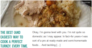 LINK The Best {and easiest} Way To Cook A Perfect Turkey. Every Time.